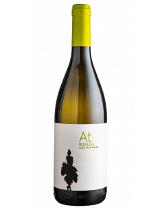 Riesling AT Aquila del Torre 2016